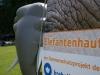 Elefantenhaut Bäckeranlage 2.6.12